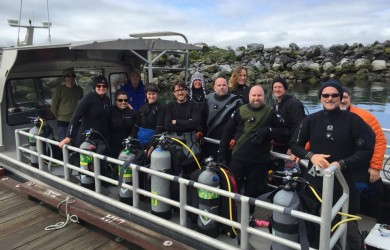 Hornby Island DIvers