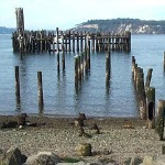 150- Titlow Beach