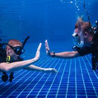 photo of divers in a pool