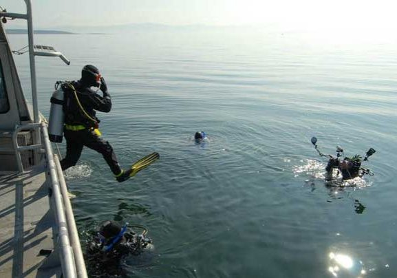 Hornby-Diving-Tours-Seattle